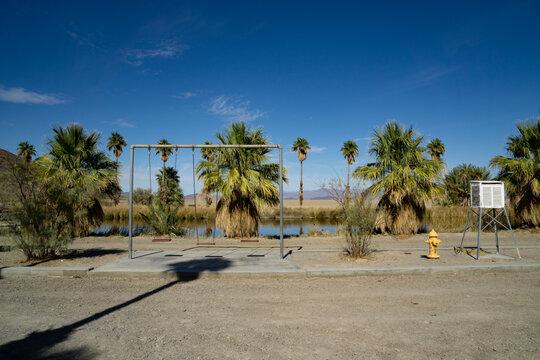 Palm Trees On Landscape Against Blue Sky