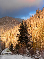 Synevyrs'ka Polyana. village view of the setting sun in the forest. Ukraine