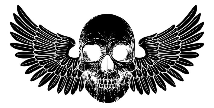 A winged skull graphic. Original illustration in a vintage engraving woodcut etching style.