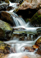 Wall Mural - calm mountain stream rapids over colrful rocks and stones