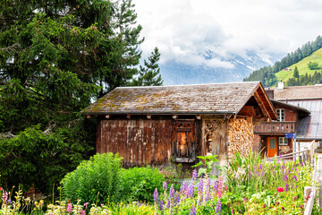 Alpine Swiss Log Storage Chalet