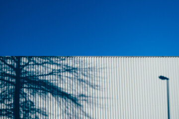 Fotomurales - Shadow Of Tree And Street Light Corrugated Wall Against Clear Blue Sky