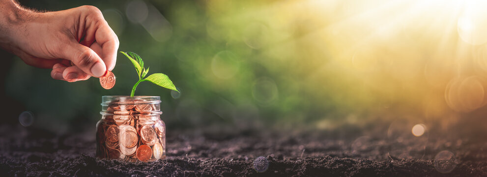 Hand Adding Penny To Coin Jar With Plant In Soil - Business Growth / Investment Concept