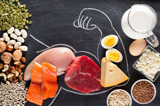 Composition with high protein food.