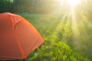 Orange tent camping at sunset in forest and green grass field and sun rays