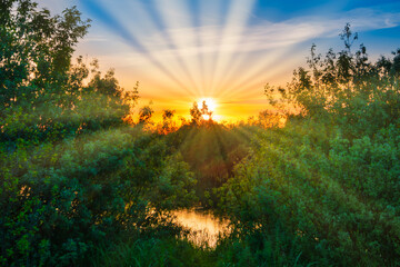 Lake water sunset and sun rays on nature landscape with sunset sky