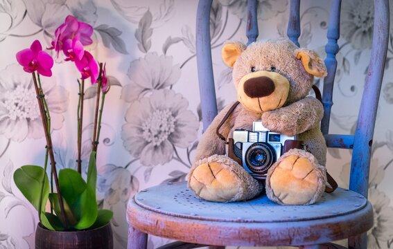 teddy bear with camera