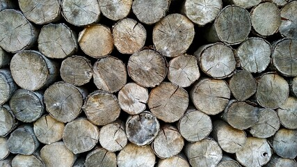 Poster Firewood texture Stacked as a wall firewood on a sunny day