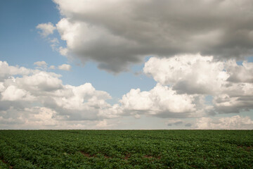 belgian countryside landscape with gray clouds