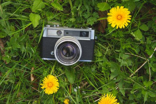 vintage photocamera on the grass