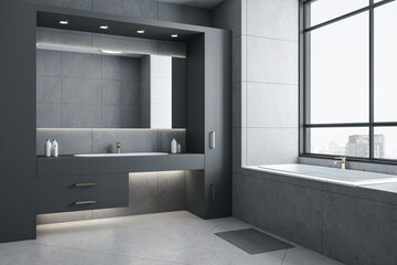 Gray bathroom interior with bath and city view.