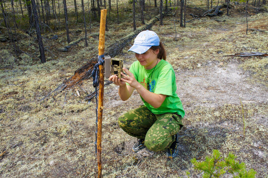 Girl zoologist sets camera trap for observing wild animals in forest to collect scientific data. Environmental protection, monitoring of rare and endangered animal species, World Wildlife Day, ecology