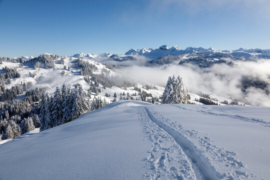Winter hiking trail on Rotenflue in the canton of Schwyz, central Switzerland
