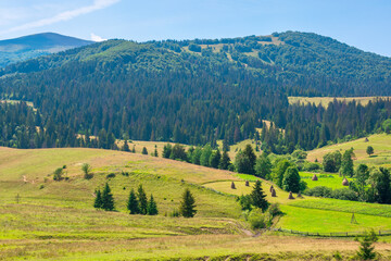 mountainous rural landscape. beautiful scenery with trees and fields on the rolling hills at the foot of the borzhava ridge. natural and sustainability development concept