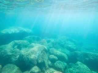 Green rocks underwater in Alghero shore