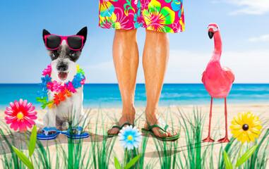 Photo sur Plexiglas Chien de Crazy dog and owner summer holidays