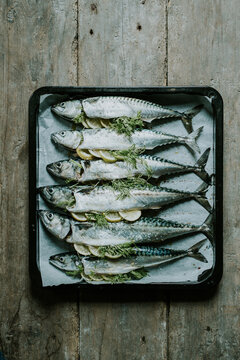 fresh fish in a pan with lemon and dill