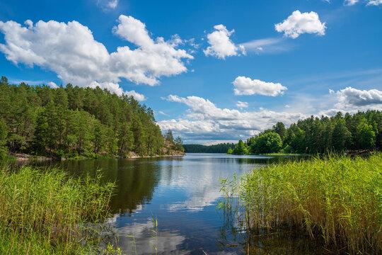 Marvikarnas Nature Reserve