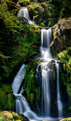 Wall Mural - view of the waterfalls in Triberg in the Black Forest region of Germany in summer