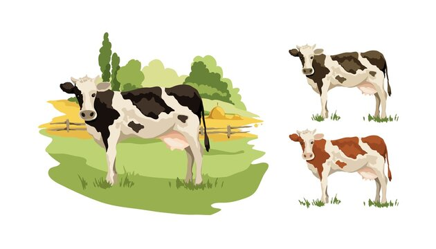 Blank for label with cow in different colors. Vector illustration, fields and meadows with cows.