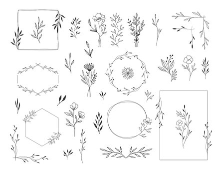 Set of botanical design elements. Frames, borders, wreaths, leaves, herbs, flowers, bouquets. Modern wedding style. Vector isolated illustration.