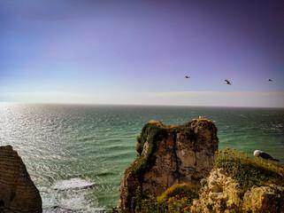 Photo sur Plexiglas Aubergine Paysage falaises Etretat Normandie France