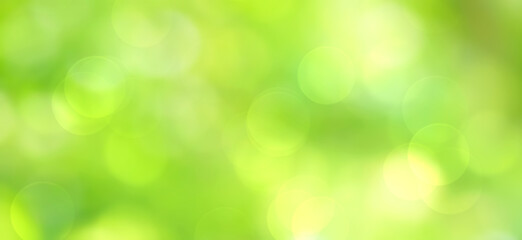Wall Mural - Green bokeh abstract background