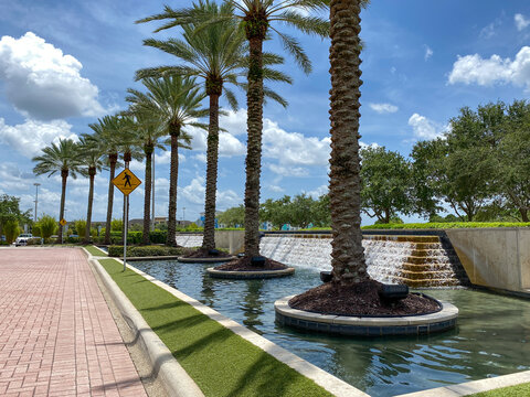 An outdoor view of a water feature at a mall with a line of palm trees beside it.