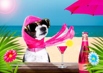 Photo sur Plexiglas Chien de Crazy cocktail drink dog on summer holiday vacation a the beach club bar