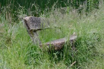 Alte verwitterte Parkbank in hohem Gras