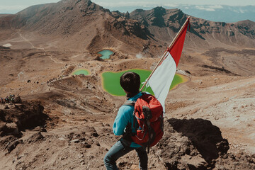 Rear View Of Hiker Holding Flag On Mountain
