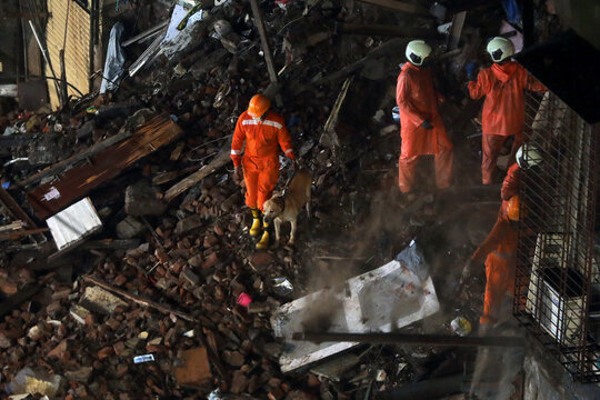 National Disaster Response Force (NDRF) personnel look for survivors trapped in the debris with a sniffer dog after part of a residential building collapsed after heavy rains in Mumbai