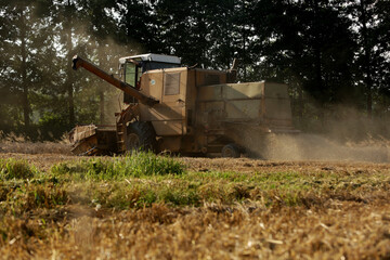 Fototapeta Wilamowice,Poland - July 15, 2020 : Harvest in Poland. Bizon ZO56 harvester