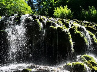 Photo sur Plexiglas Rivière de la forêt waterfall in the park
