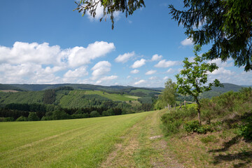 Wall Mural - Sauerland region close to Winterberg with a small hiking trail, Germany