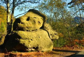 Sandstone rocks at the saxon switzerland landscape in autumn season