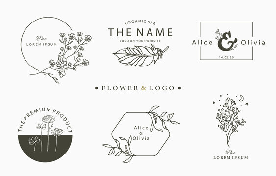 Beauty occult logo collection with tree,flower,feather.Vector illustration for icon,logo,sticker,printable and tattoo