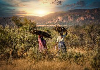 Fototapeta African woman carry wood obraz