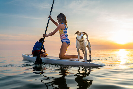 Girl and boy with their pet dog on paddleboard in Lake Michigan during sunset