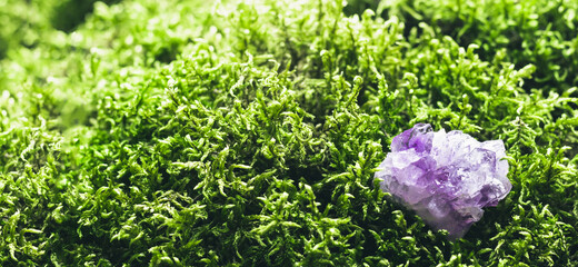 Amethyst on beautiful moss background. Magic stones for rituals, meditation and spiritual practices. Soft focus, banner format