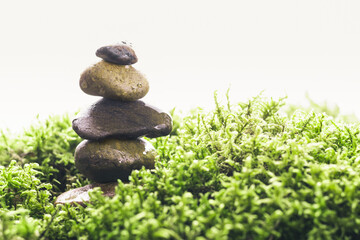 Stack of zen stones in green moss on white background. Natural backdrop for your design. Wet pebble with water drops