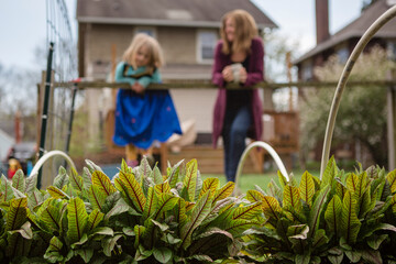 Plants grow in raised garden beds with mother and daughter in back