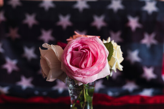Roses on a background with the American flag. 4th of July Celebration