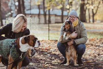 Smiling man crouching while embracing pet and looking at woman with boxer dog