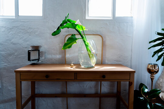 Plant in glass vase by golden ball on wooden desk in bedroom at home