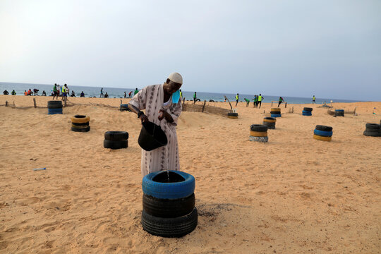 A man from Guediawaye je m'engage association waters a newly planted tree to reforest the coastline on the coast of Guediawaye, Dakar