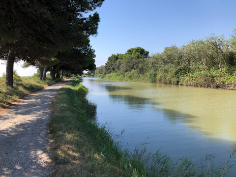 Canal de la Robine calm water under trees  lined with a towpath