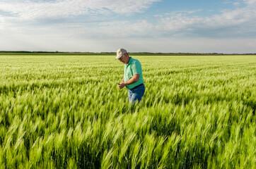 Portrait of senior farmer standing in in wheat field.