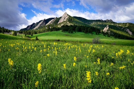 Boulder Colorado Flatirons Spring