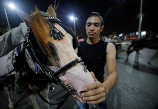 A man pets his horse after a horse cart race, following the outbreak of the coronavirus disease (COVID-19), in Cairo